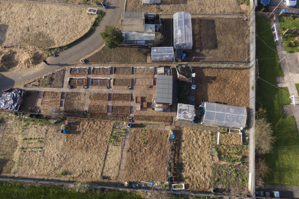 Aerial view of the allotments, 2021 © Denise Maxwell