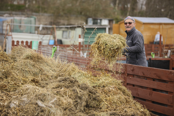 Z and J Debrowski, Woden Road Allotments, 2021 © Denise Maxwell